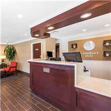 Comfort Inn Santa Monica - West Los Angeles - Lobby