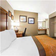 Comfort Inn Santa Monica - West Los Angeles Room - Standard Room