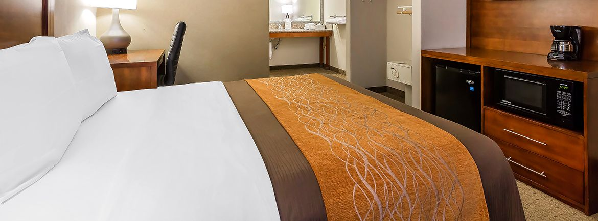 Comfort Inn Santa Monica-West Los Angeles offering Standard Single-NQ